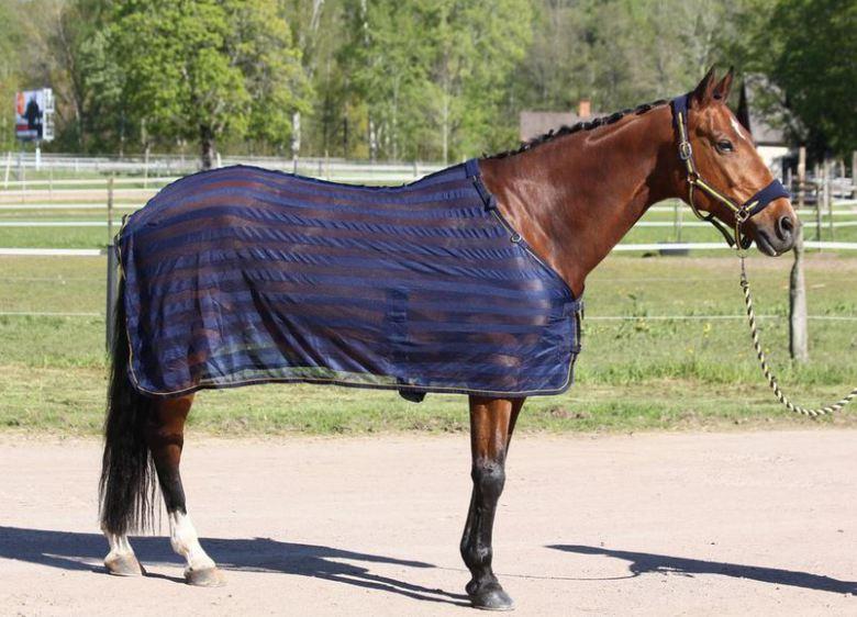 nättäcke till häst
